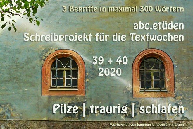 2020-09-20 ABC-Etüden TW 39+40 Kommunikatz-Wortspende Pilze - traurig - schlafen